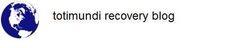 totimundi recovery blog